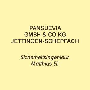 Jettingen Pansuevia Markus Reimer Keynote Speaker Redner Referent Vortrag Innovation Qualität Wissen Agilität